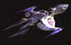 Babylon 5: Ships: The Interstellar Alliance