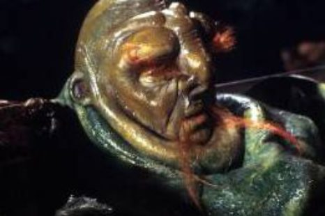 Hitch Hikers Guide to the Galaxy: Cultures: Vogons